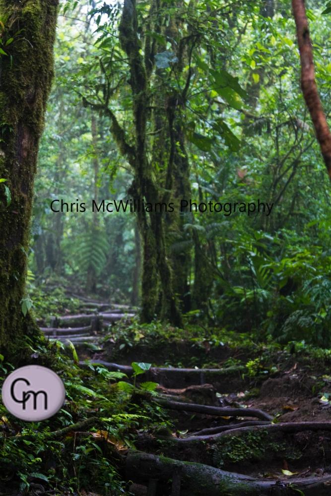 Costa Rica2 (Winnipeg Travel Photographers) (4/5)
