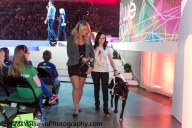 we day 2012-1014