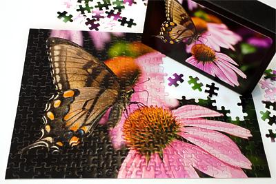 photo-puzzles-400x267