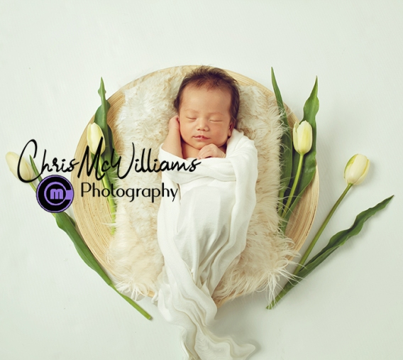 Winipeg Newborn Photographers
